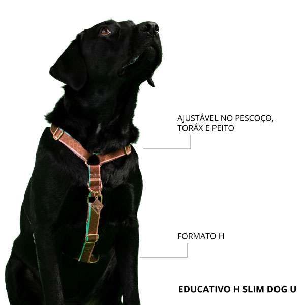 Peitoral Dog U H Slim Educativo New York 3